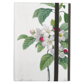 Apple Blossom, from 'Les Choix des Plus Belles Cover For iPad Air