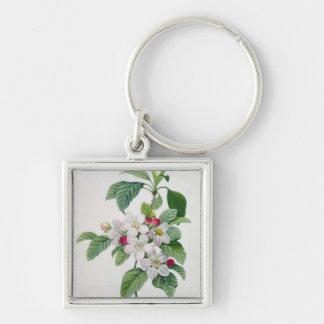 Apple Blossom, from 'Les Choix des Plus Belles Keychain