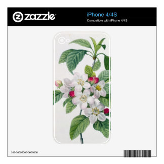 Apple Blossom, from 'Les Choix des Plus Belles Skins For The iPhone 4