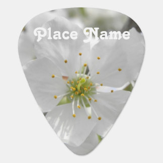 Apple Blossom Pick