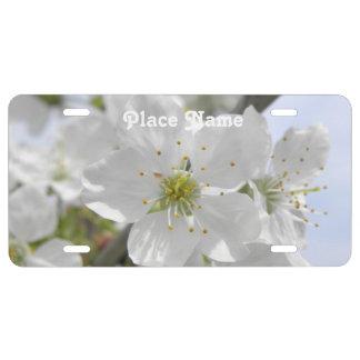 Apple Blossom License Plate
