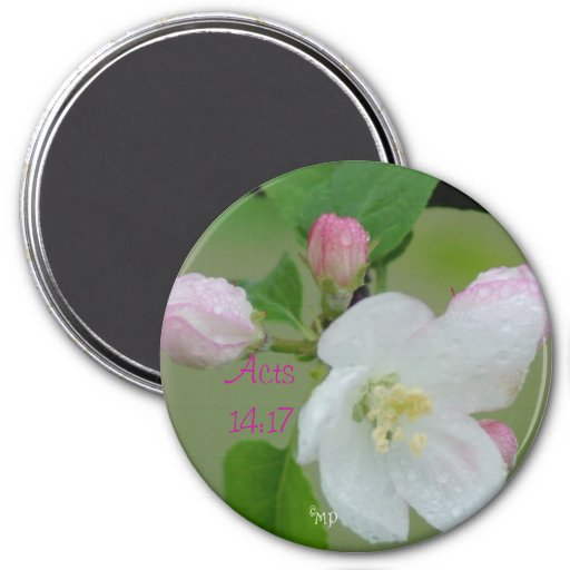 Apple Blossom Magnet- choose square or round