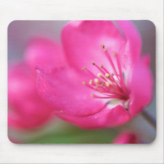 Apple Blossom Mousepad