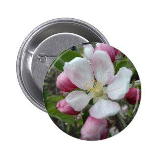Apple Blossom Pinback Button