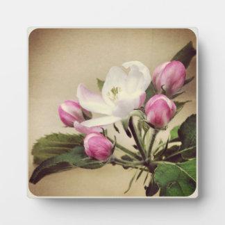 Apple Blossom Plaque