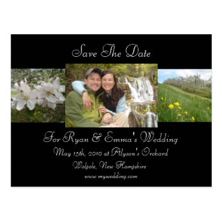 Apple Blossom Save The Date Postcards