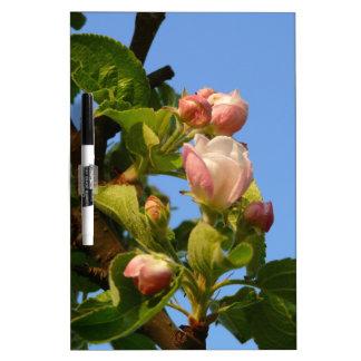 Apple blossom still closed Dry-Erase board