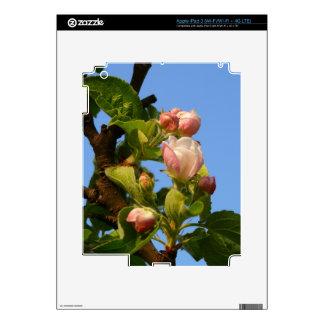 Apple blossom still closed iPad 3 skin