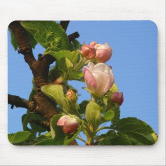 Apple blossom still closed mouse pad