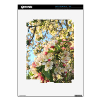 Apple Blossom Sunshine Decals For The iPad 2