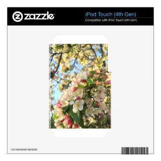 Apple Blossom Sunshine iPod Touch 4G Skins