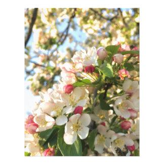Apple Blossom Sunshine Letterhead