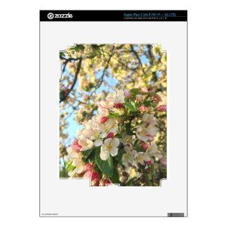 Apple Blossom Sunshine Skins For iPad 3