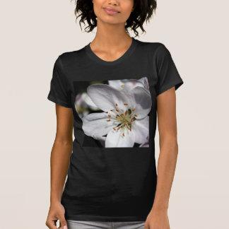Apple Blossom Tee Shirt