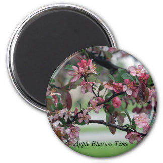 Apple Blossom Time 2 Inch Round Magnet