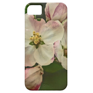 Apple Blossom Time iPhone SE/5/5s Case
