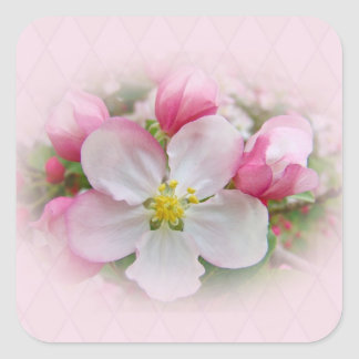 Apple Blossom Time Square Sticker