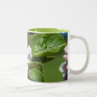 Apple Blossom Two Tone Mug