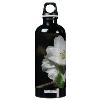 Apple blossom water bottle