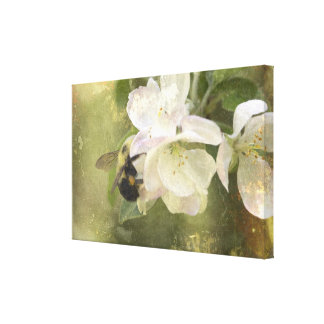 Apple Blossoms and Bumblebee Canvas Print
