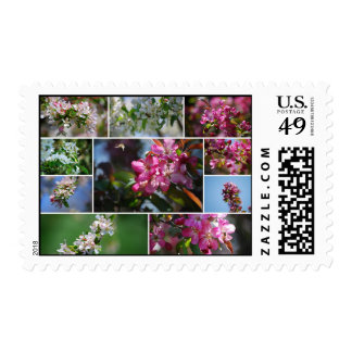 Apple blossoms and honey bees collage postage