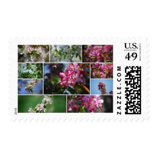 Apple Blossoms and Honey Bees Stamp