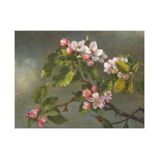 Apple Blossoms and Hummingbird 1875 Canvas Print