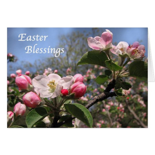 Apple Blossoms at Easter Card