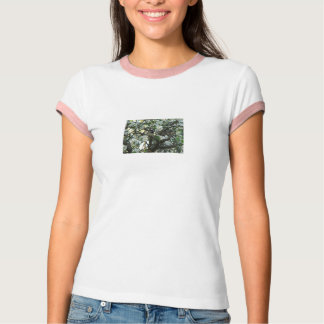 Apple Blossoms & Bird Tee Shirt