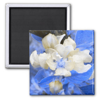 Apple Blossoms- blue and brown 2 Inch Square Magnet