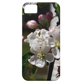Apple Blossoms iPhone 5 Case