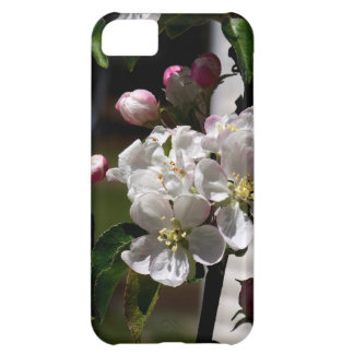 Apple Blossoms iPhone 5C Cases