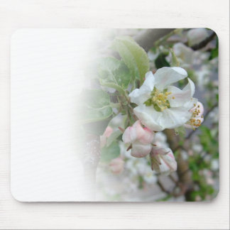 Apple Blossoms Fading Away Mouse Pad