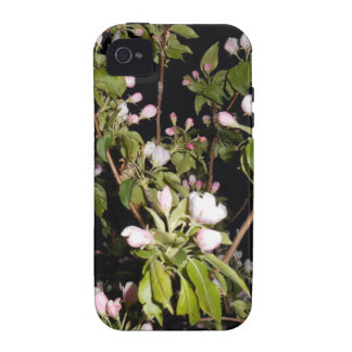 Apple Blossoms iPhone 4 4S Case