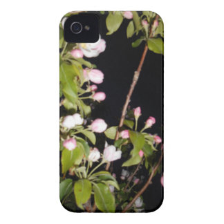 Apple Blossoms iPhone 4 Case