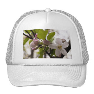 Apple Blossoms Trucker Hat