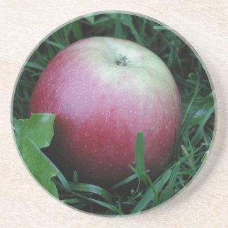Apple Closeup Drink Coaster