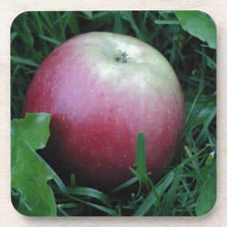 Apple Closeup Coaster