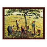 Apple cosecha en Eragny, por Camille Pissarro Tarjeta Postal