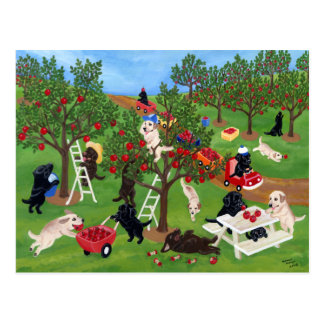 Apple cultiva Labradors Tarjeta Postal