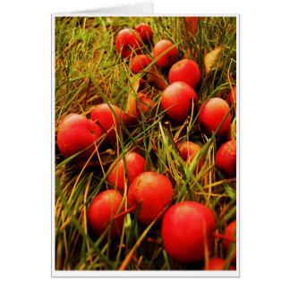Apple de oro malhumorado doblado carda tarjeta pequeña
