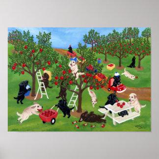 Apple Farm Labradors Artwork Posters