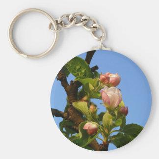 Apple florece cielo todavía cerrado, azul llavero redondo tipo pin
