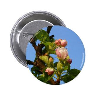 Apple florece cielo todavía cerrado, azul chapa redonda 5 cm