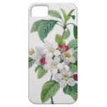 Apple florece, del 'DES de Les Choix más bellezas Funda Para iPhone SE/5/5s