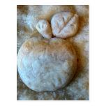 Apple florece empanada postal