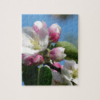 Apple florece en primavera puzzle