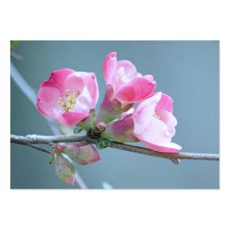 Apple florece la mini impresión #P0358 Tarjetas De Visita Grandes
