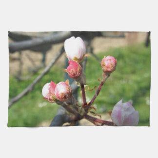 Apple florece los brotes cerrados en primavera toalla de mano