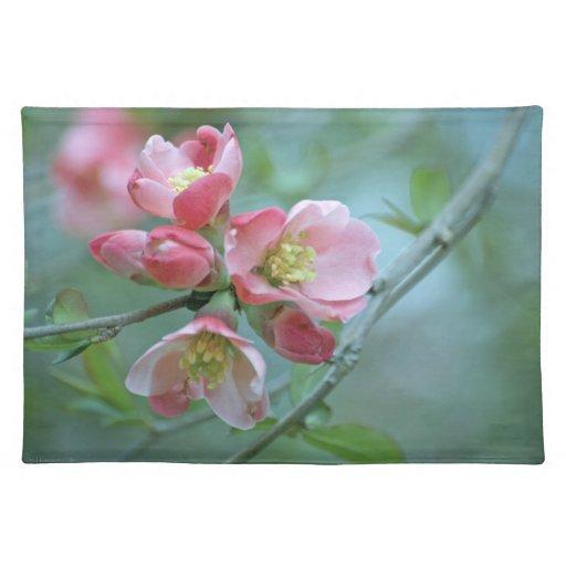 Apple florece #P0356 Placemats Mantel
